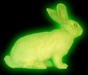 RadioactiveRabbit