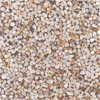 Seashell Tiles Mother of Pearl Backsplash Irregular Mosaic ...