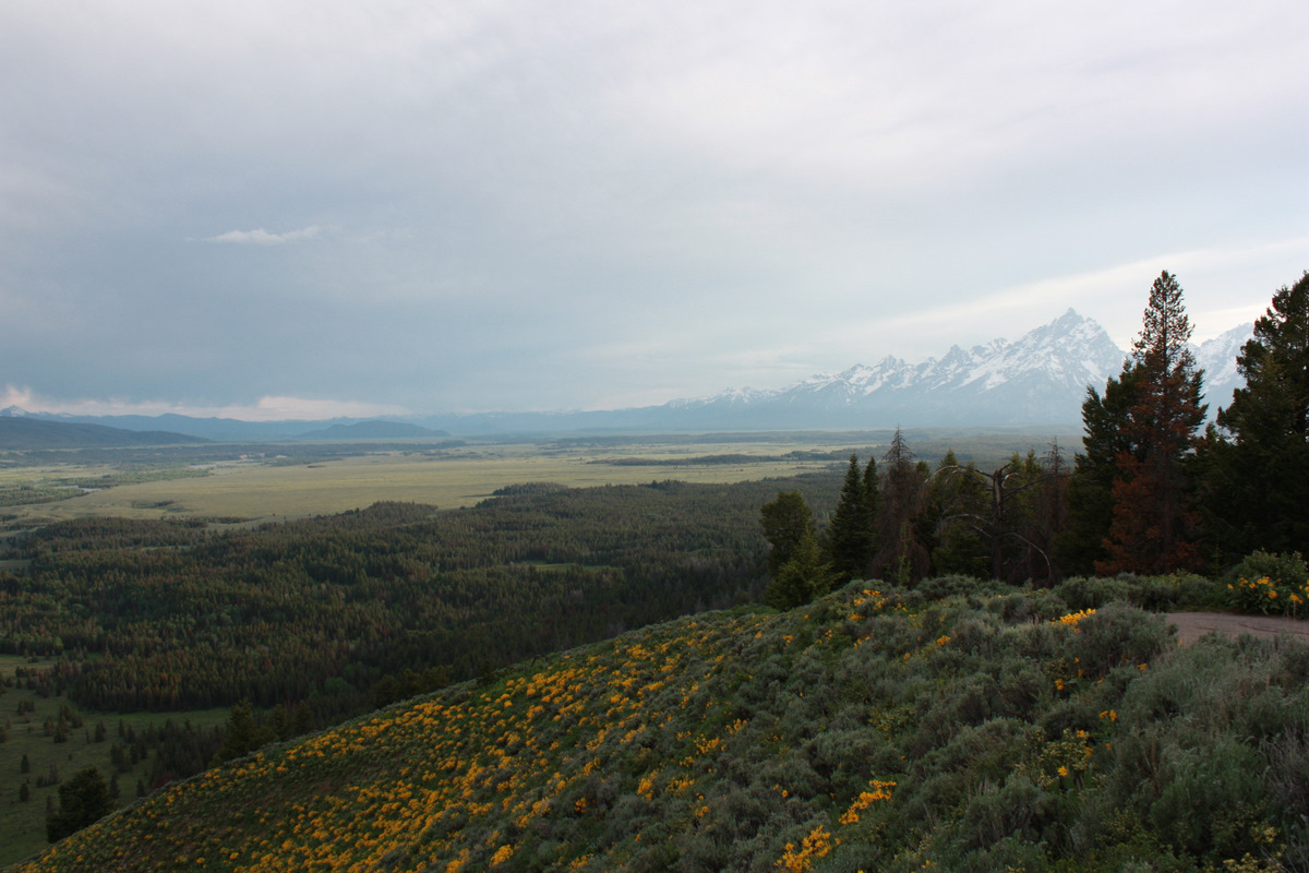 Moose, Bike Riding, and Killer Views of Grand Teton National Park [Video]