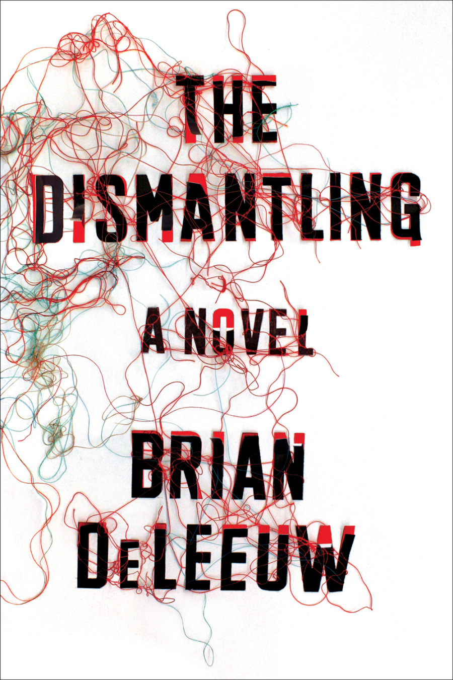 The Dismantling A Novel by Brian DeLeeuw