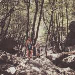Yosemite forest with solafide and Jude Yosemite
