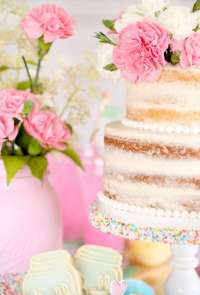 Country Chic Bridal Shower - Bridal Shower Ideas - Themes
