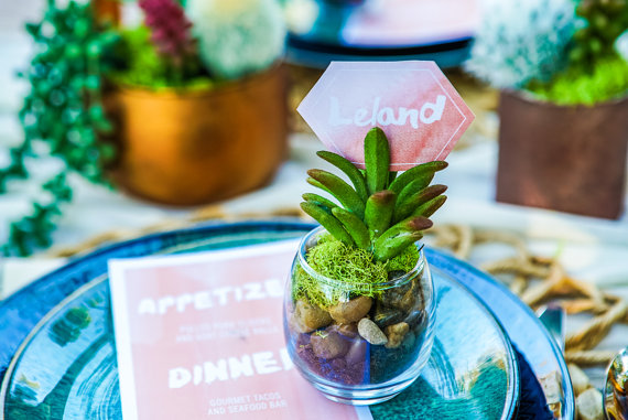 Succulent Bridal Shower favors centerpieces