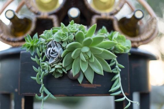 Colorful-Au-Natural-Bridal-Shower-Green-Succulents