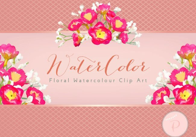 wca91-pink-white-baby-breath-flower-clipart