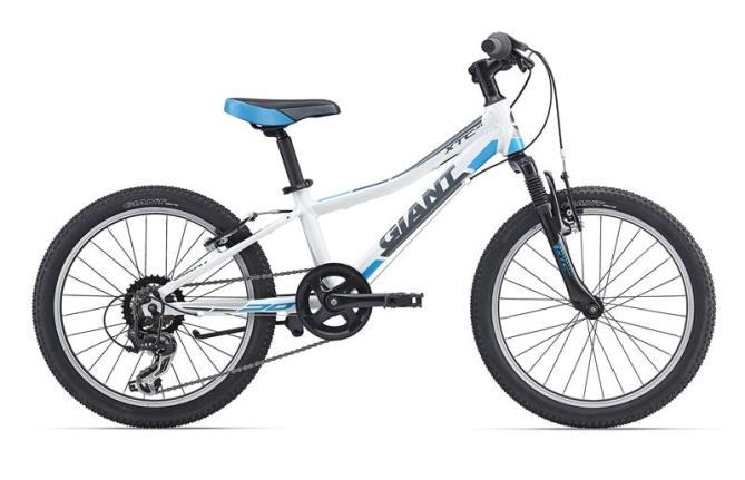 Bright Electric Bikes - kids MTB 2