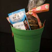 May Day Baskets with Cookies and Flowers!