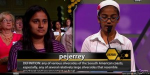 7 awkward, uncomfortable and funny moments from the National Spelling Bee