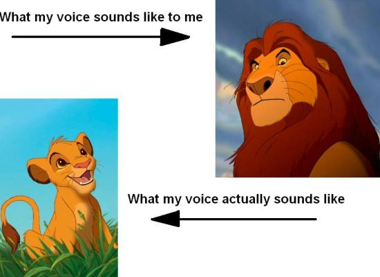 hearing your own voice expectations vs reality