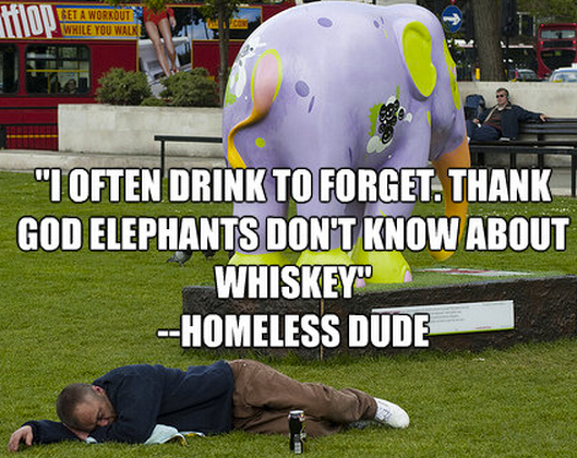 """""""I often drink to forget. Thank God elephants don't know about Whiskey"""""""