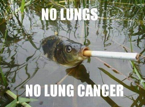"""No lungs, no lung cancer"""