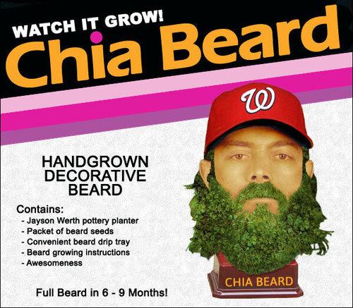Jayson Werth Chia Beard