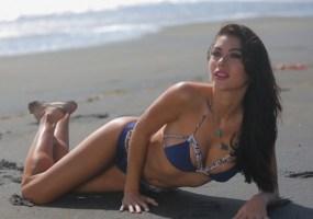 Arianny Celeste bikini calendar