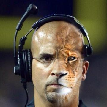 james-franklin-lion