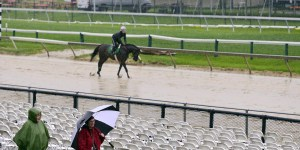 Here's Everything You Need to Know About the 2014 Preakness Stakes