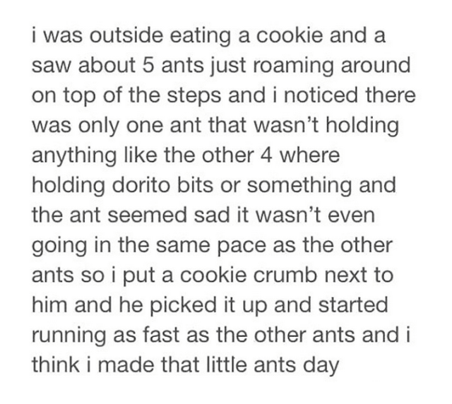 tumblrs-best-worker-ant-story
