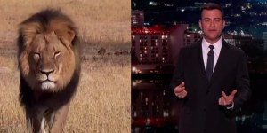 Jimmy Kimmel Has A Message For The Hunter Who Shot And Killed Cecil The Lion