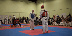 Taekwondo Bro Delivers BRUTAL Knockout With A Roundhouse Kick That Would Make Chuck Norris Proud