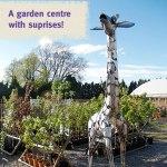 A garden centre with surprises