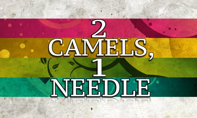 2 Camels 1 Needle