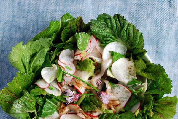 harukei turnip, radish, and bitter greens salad // brooklyn supper