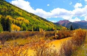 Fall Collors on the Million Dollar Highway, South of Ouray, Montana
