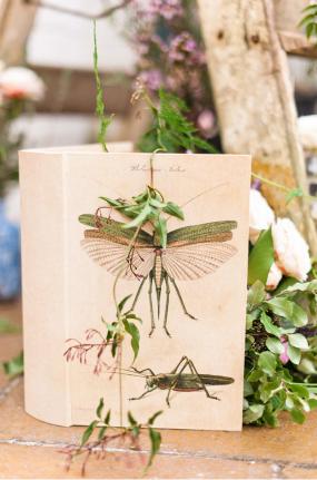 Brudeblogg-vår-høst-rustikt-bryllup-av-Anushe-Low-5