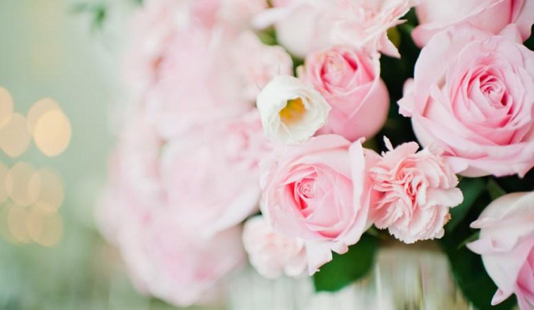 Wedding Identity – Klender & Queila