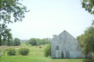 Bryarton Farm