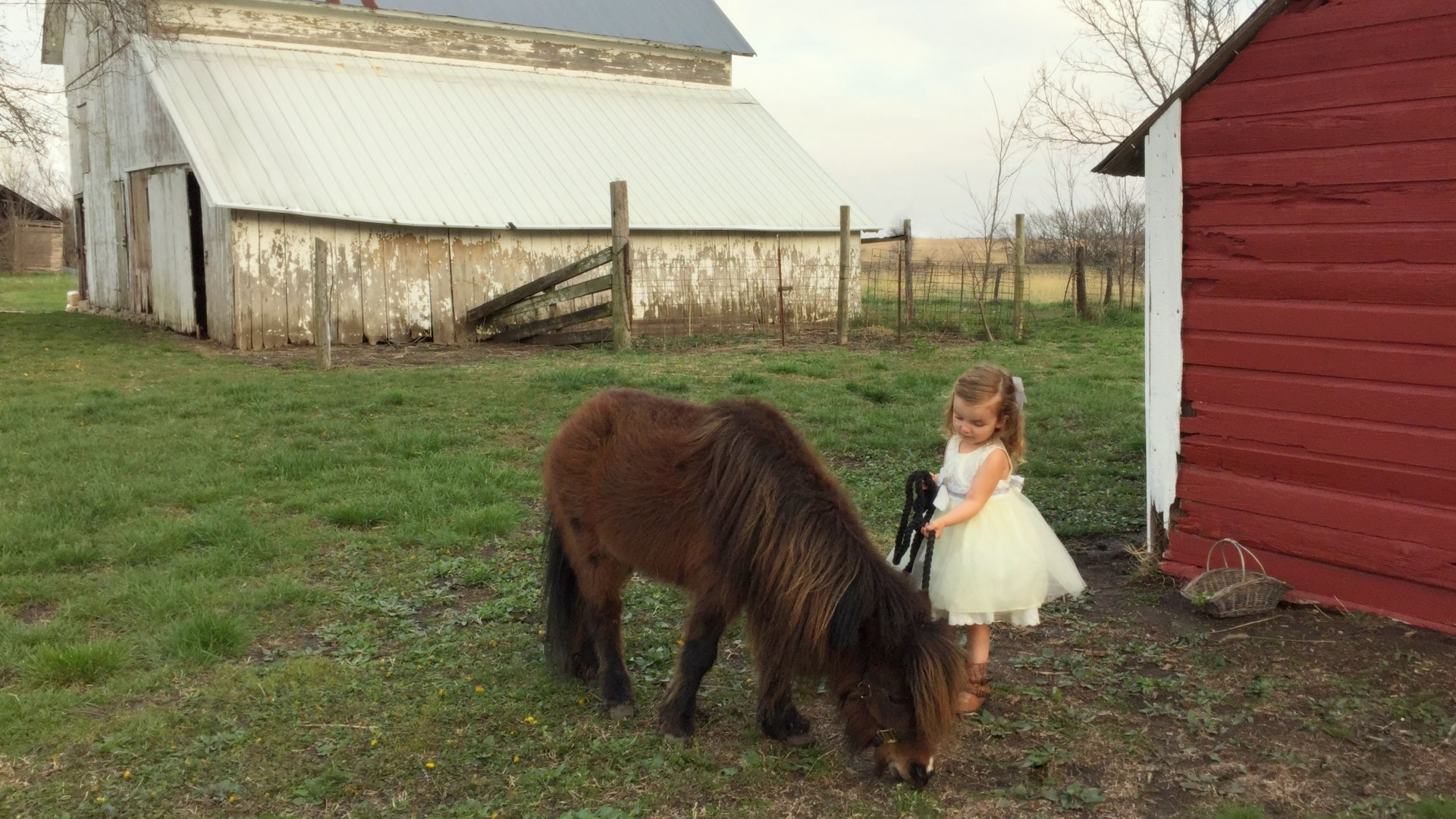 My Little Pony {An Answered Prayer and a DIY Dress Makeover}