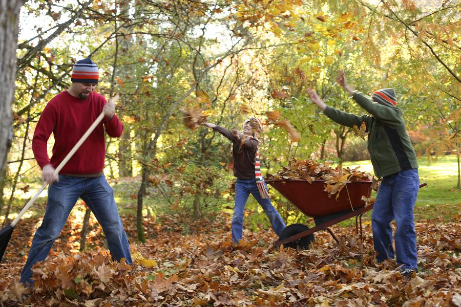 Preventing Injuries When Undertaking Fall Yard-Work