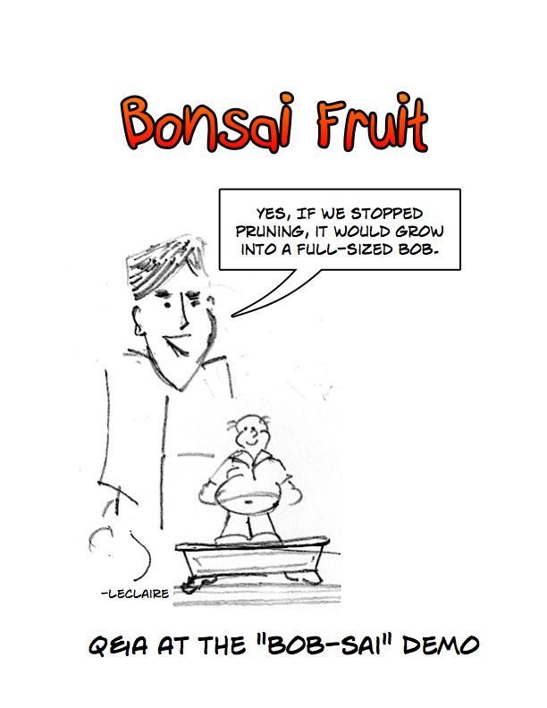 wiring bonsai video by bonsai