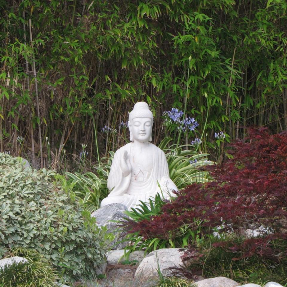 Buddha SRF