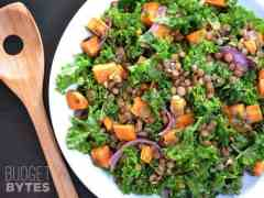 Wilted Kale and Lentil Salad