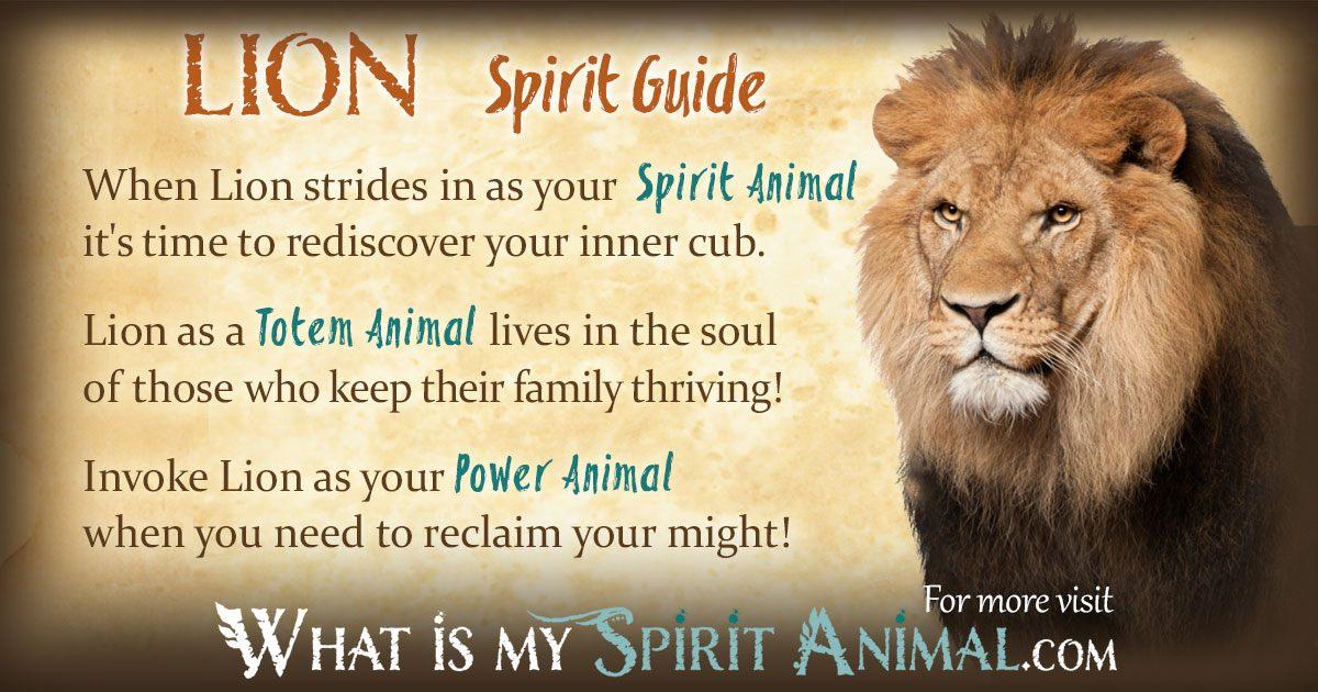 Majestic Fall Wallpaper Lion Symbolism Amp Meaning Spirit Totem Amp Power Animal