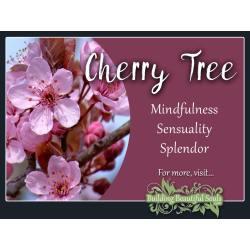 Small Crop Of Stella Cherry Tree