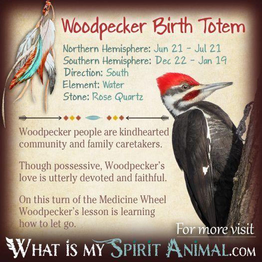 Native American Zodiac  Astrology Animal Birth Signs  Totems