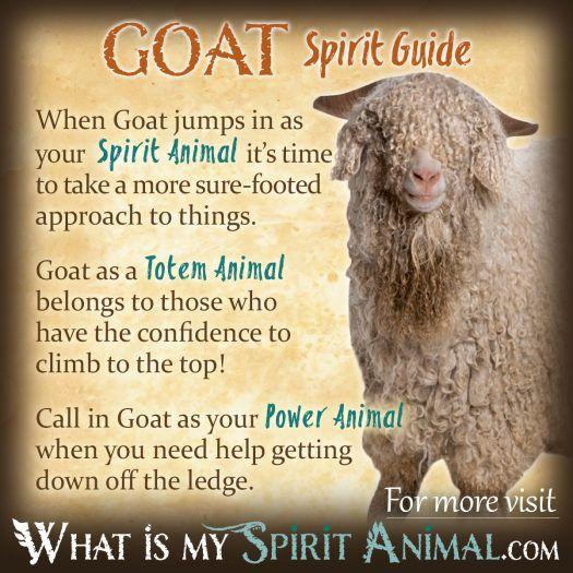 Willpower Quotes Wallpaper Spirit Totem Amp Power Animals Spirit Animal Meanings