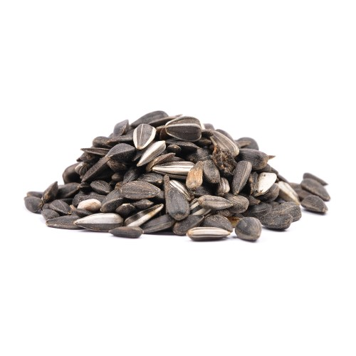 Medium Of Can You Eat Sunflower Seed Shells