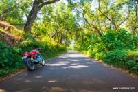 rider-mania-2015-7220