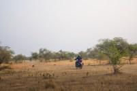 bhanpura-gandhi-sagar-01523