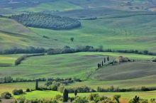 Aranoa -Toscana_(Joaquin@pixab)
