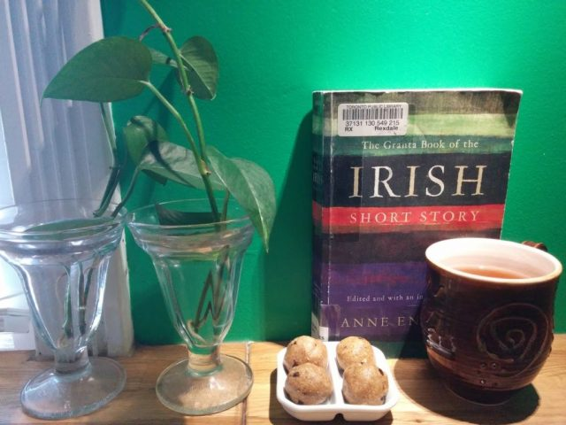Irish Short Stories Enright