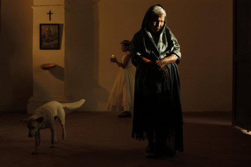 oaxaca old lady and dog