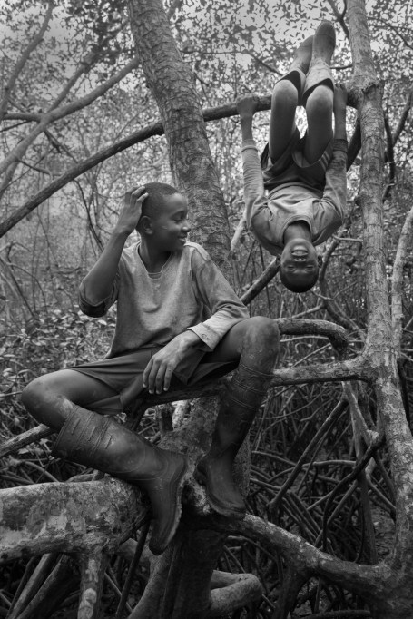 Cesar Castro and Olger Grueso goof around in the mangrove while taking a rest from picking shells.