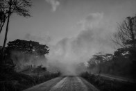 The dust cloud of a truck at high speed carrying the cut trees in the forest. Dja Faunal Reserve.