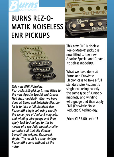 Burns Guitars Accessories