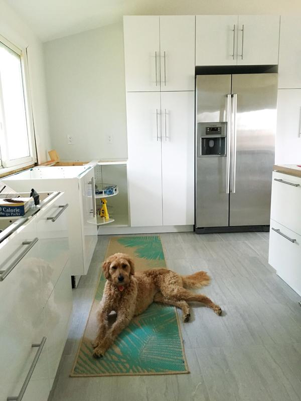 kitchen renovation progress report #11