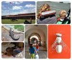 Three fun places near Savannah to visit with your kids