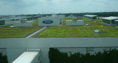 "The roof of Dearborn Truck Plant is covered with a plant called sedum. The ""green roof"" lowers temperatures inside the plant by as much as 10 degrees and absorbs up to 4 millions gallons of rainwater."